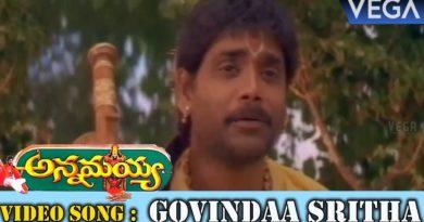 Govindaa Sritha song lyrics